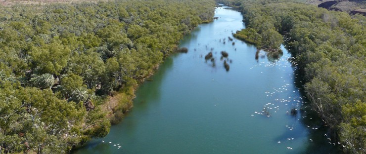 Protecting our waterways - Fortescue River, Millstream National Park