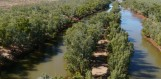 Protecting our waterways - Ashburton River, Nanutarra Station